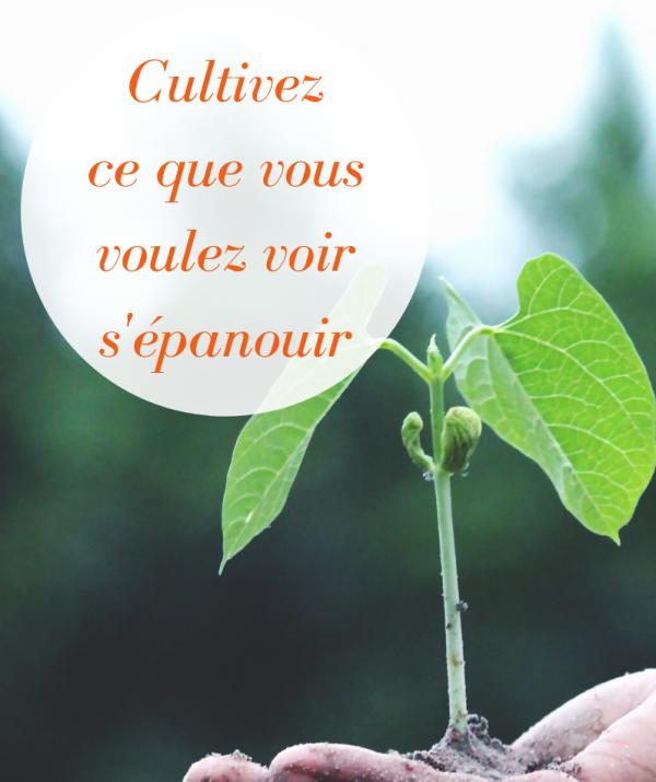 cultiver son bien-être c'est cultiver ce que vous voulez voir s'épanouïr